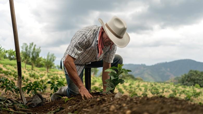 Secretaria de Desenvolvimento Agrário e Banco do Brasil articulam ampliação de linha de crédito para produtores agrícolas
